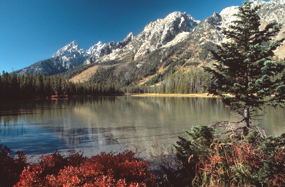 String Lake and Grand Teton
