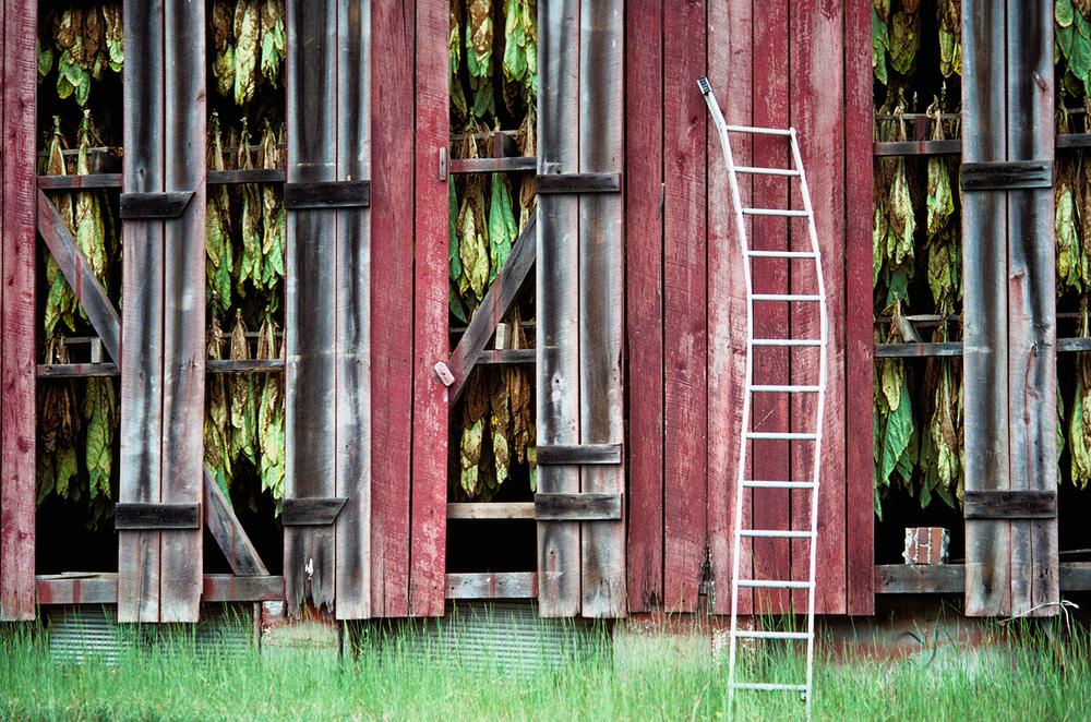 The Drying Barn