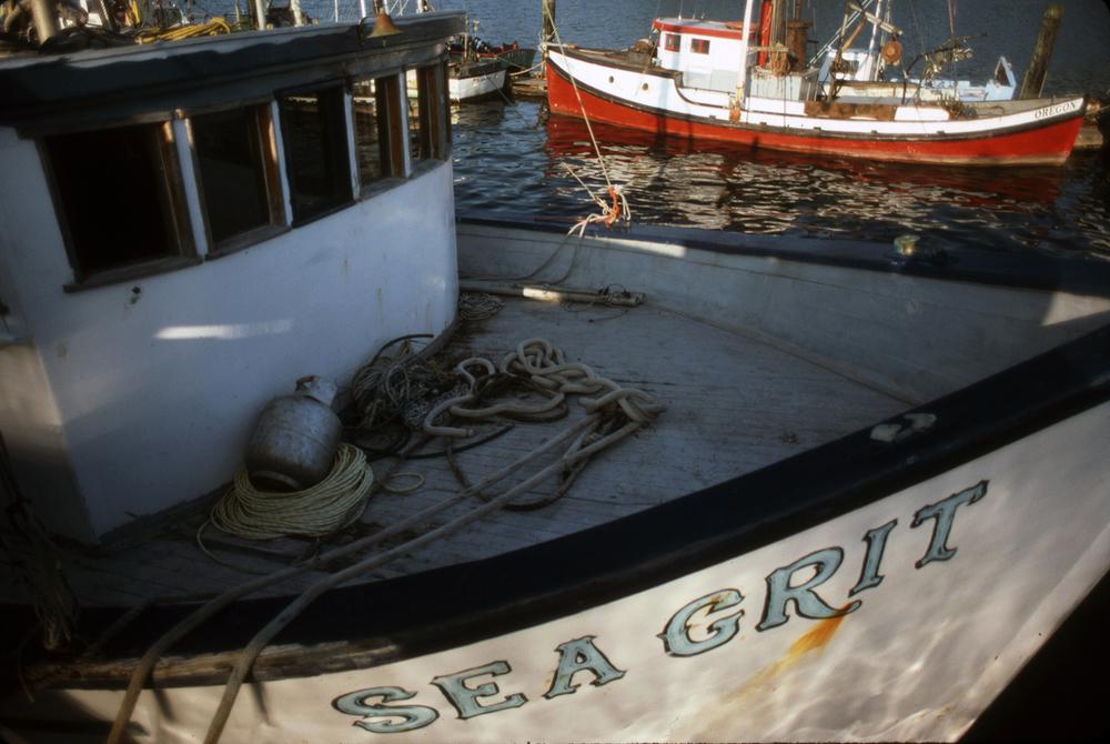 Sea Grit