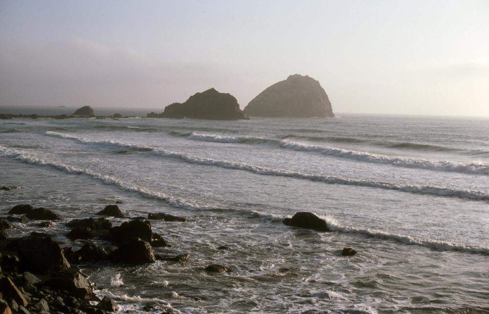 Foggy Beachscape