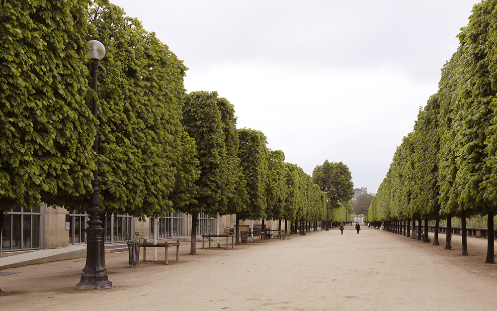 Walk Along the Tuileries