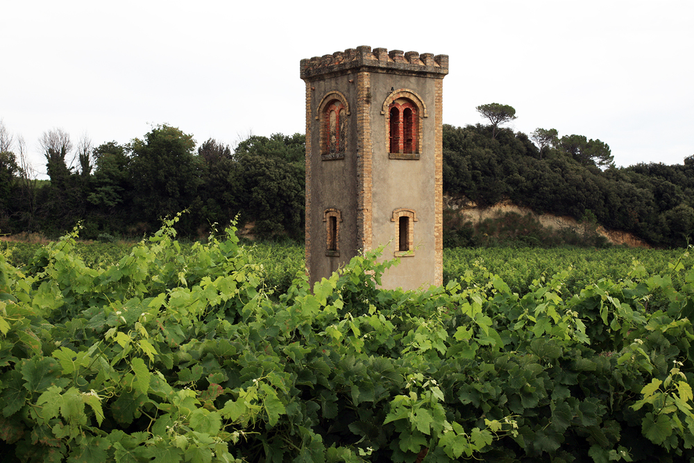 Historic Wine Tower