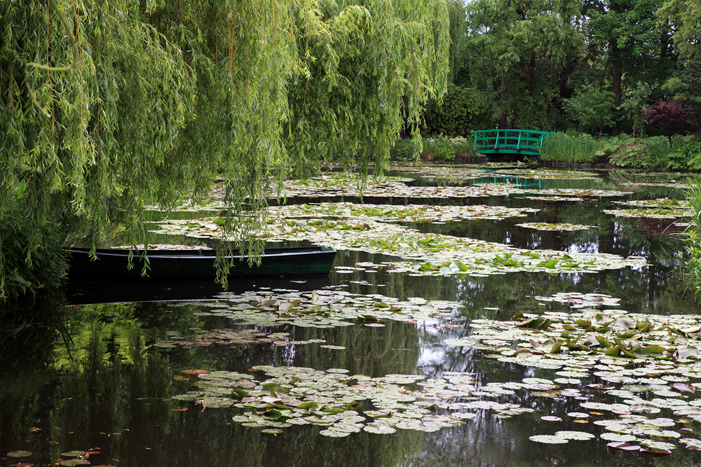 Lily Pond in Giverny