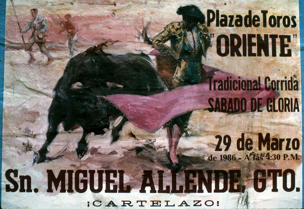 Bull Fight in San Miguel