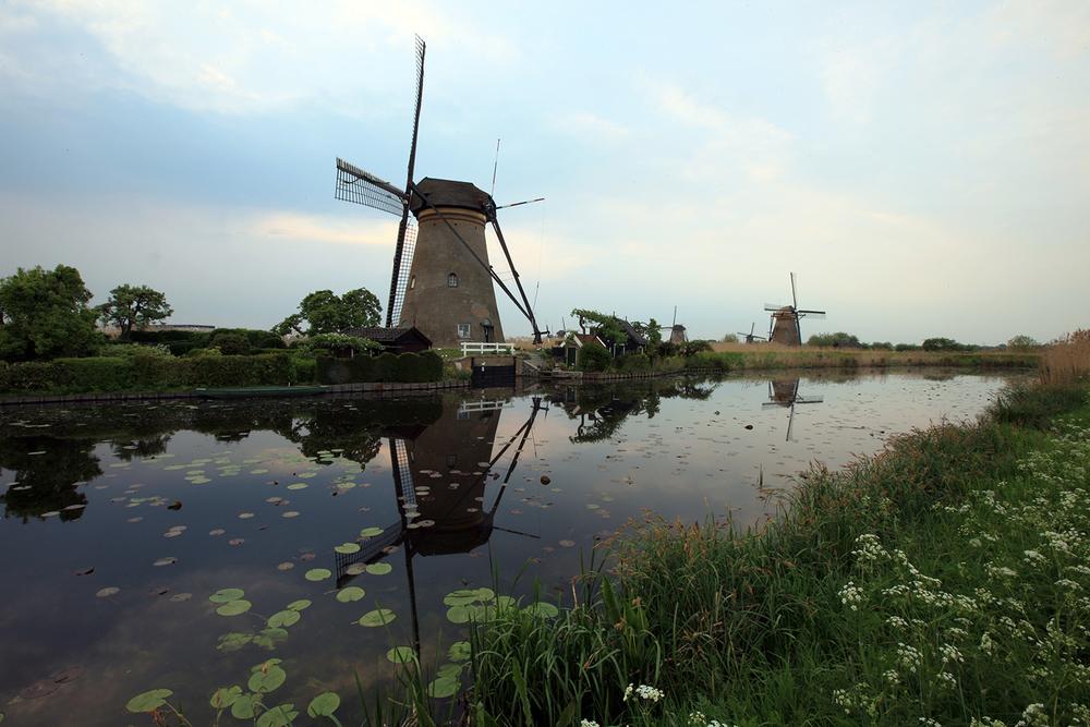 Calm in Kinderdijk