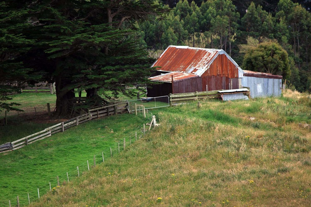The Otago Barn