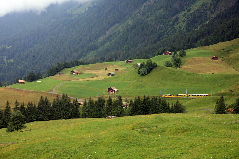 Wengen Landscape