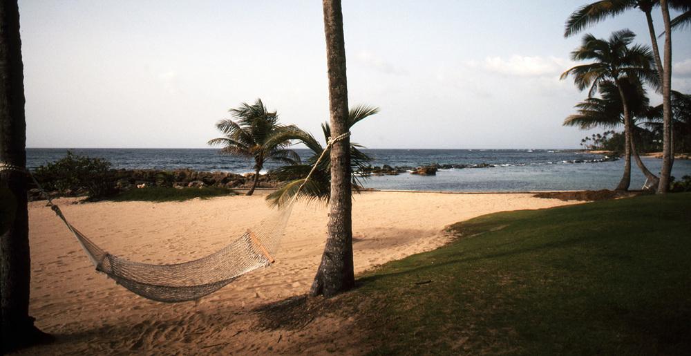 Hammock at Dorado Beach