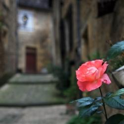 Bordeaux, Burgundy & Dordogne