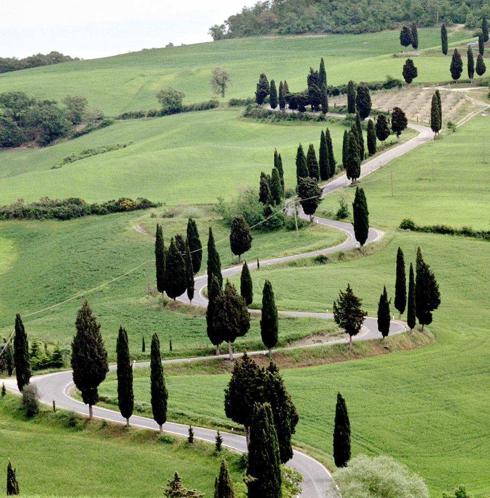 Classic Tuscan Road