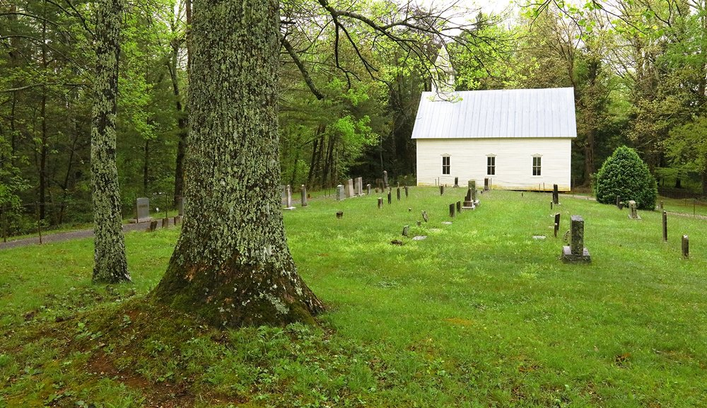 The Primitive Baptist Church