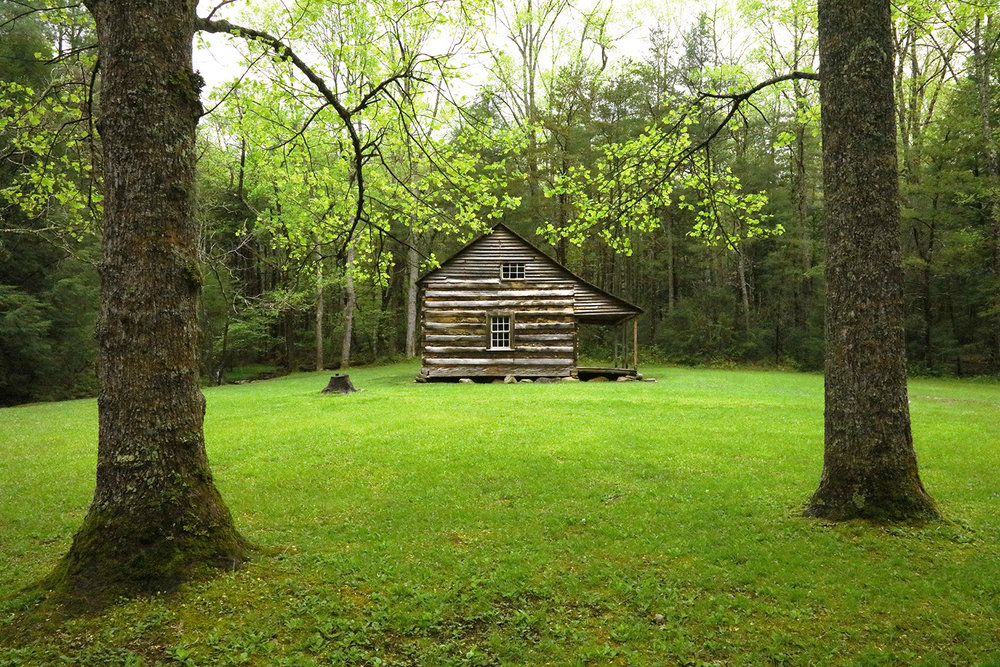 The Carter Shields Cabin