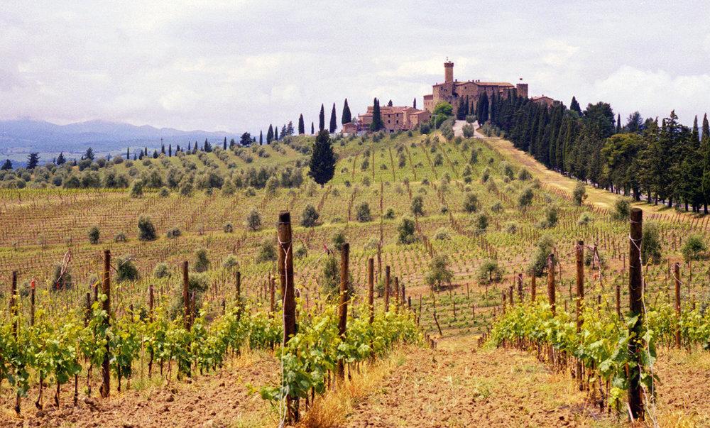 Castello Banfi in Montalcino