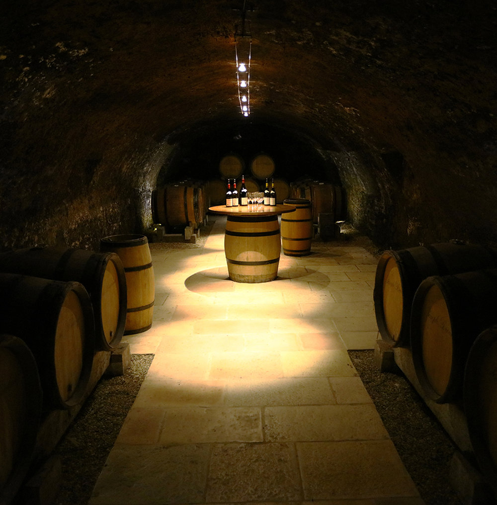 Private Tasting in the Joseph Drouhin Cellars