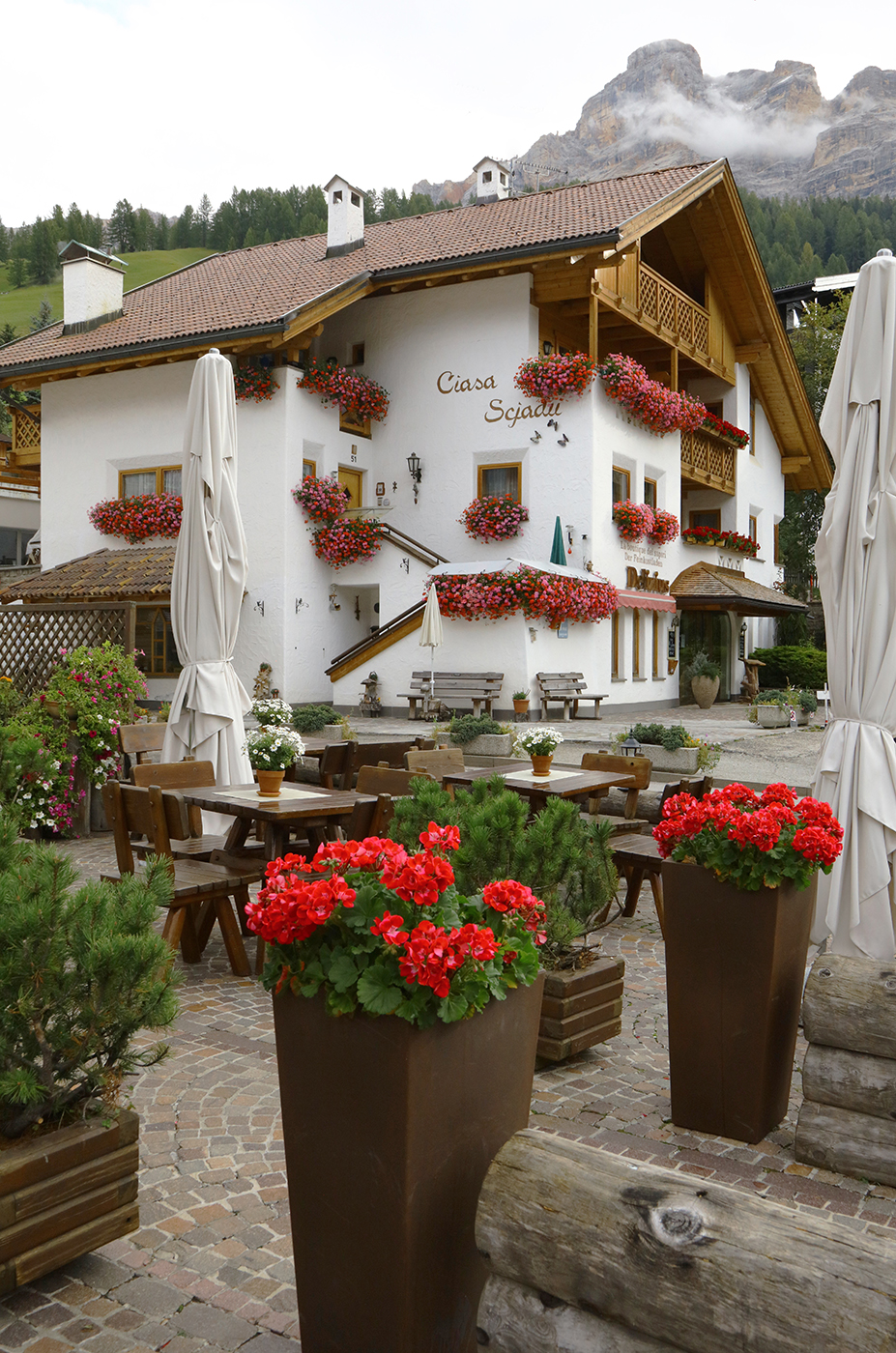 The Flowers of San Cassiano