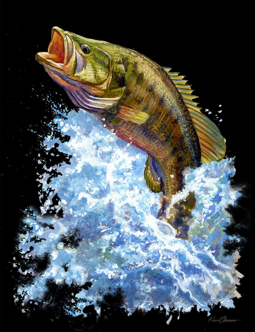 """Jumping Jack Bass"" • 11"" x 15"" watercolor"