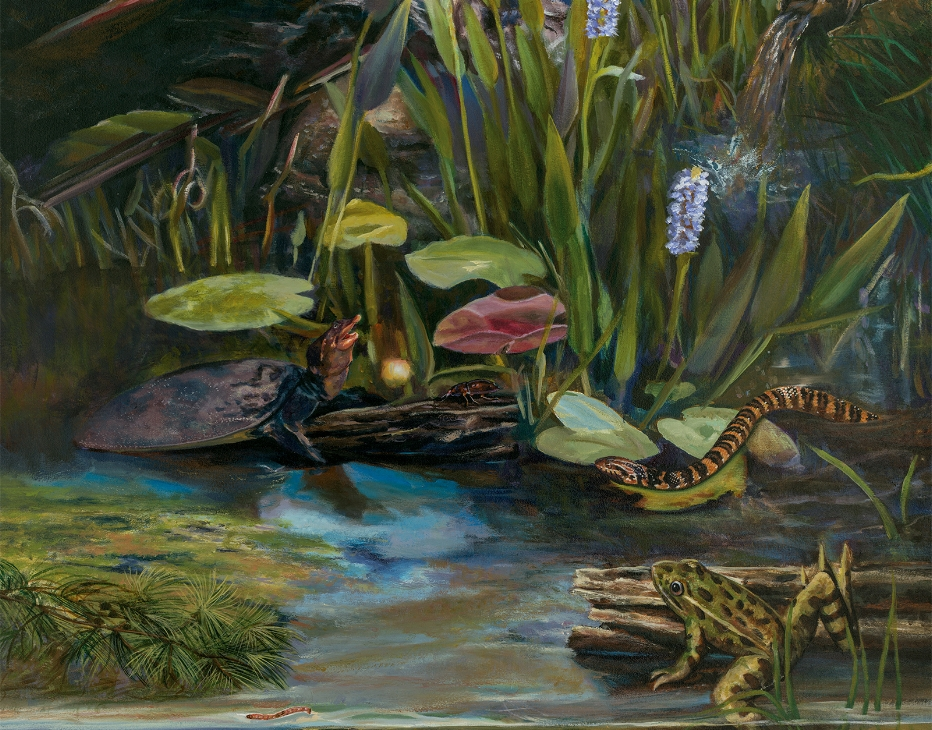 """Bio-accumulation mural""- detail • E.O. Wilson Biophilia Center in Warren County, FL. © KT"