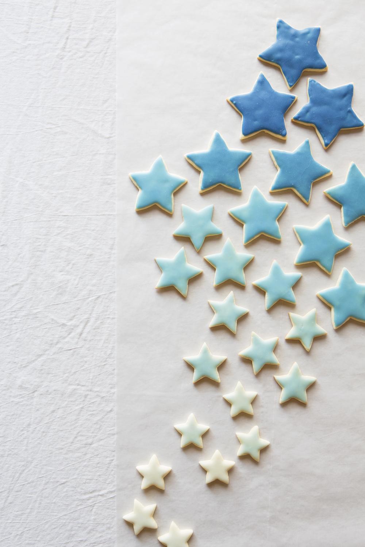 Cookie Monster14533.jpg
