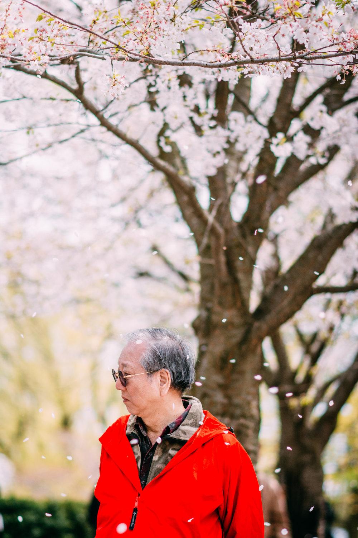 Sakura Blog-10.jpg