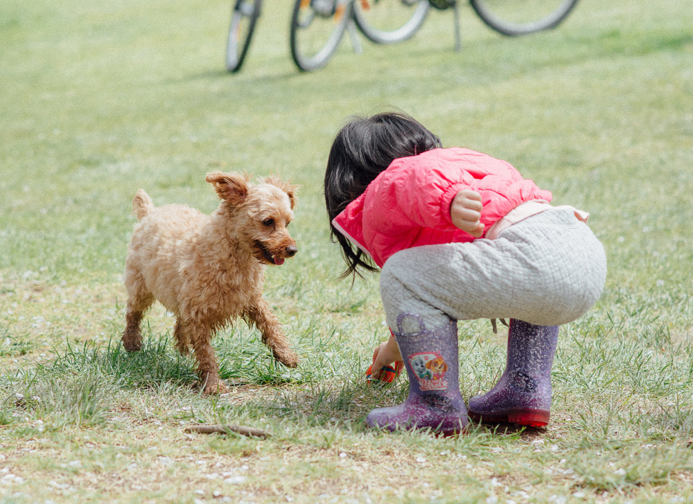 Pupper & Girl.jpg