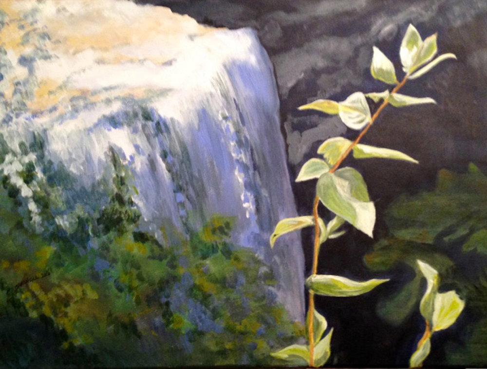 A Sprig: Decew Falls