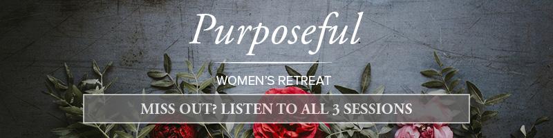 Purposeful.slider.audio.jpg