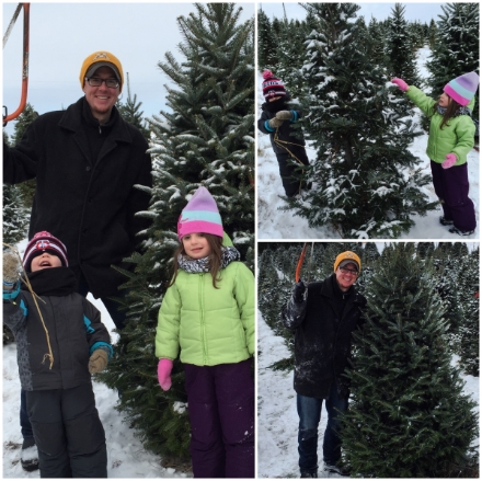 """Clockwise from Left: Finding our tree; kids """"helping"""" by cleaning off the snow from the other trees while daddy cut down our tree; Success--tree is down!"""