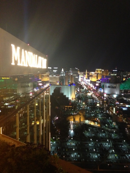 Mandalay Bay, Vegas: our home away from home for the remainder of the week.