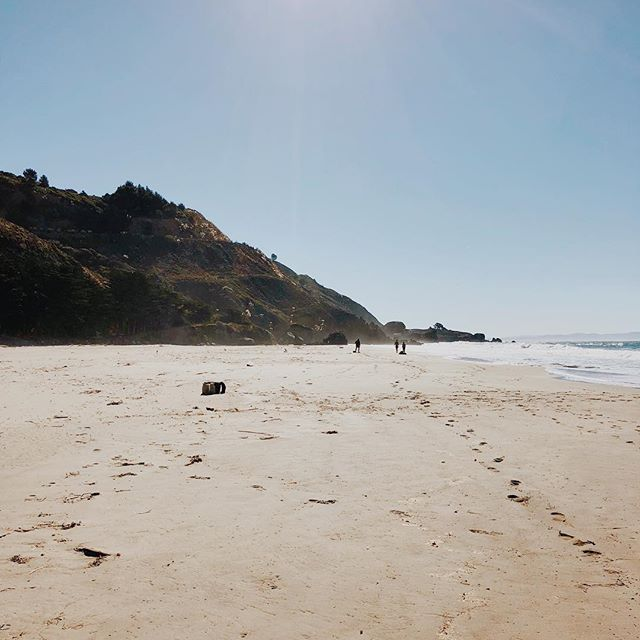 Last Sunday we escaped from San Francisco for an idyllic morning in Stinson Beach. Picked up @equatorcoffees on the way, walked on the beach, dipped our toes in the ocean, and indulged in shrimp burritos from @thesirencanteen before heading home 💫 • more on the blog!