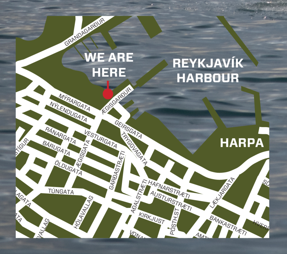 Mr. Puffin Tours Location in Reykjavík