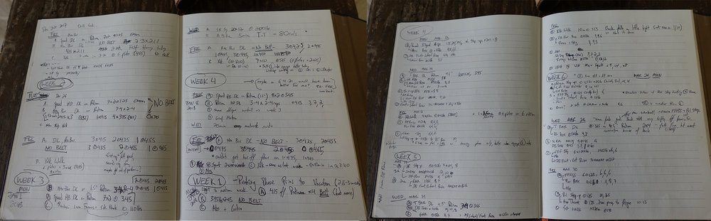 A couple pages from my training journal.