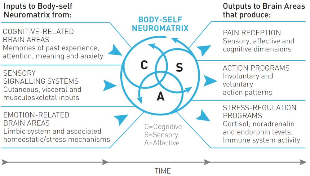 outline theories about the experience of pain Article outline what is pain pain pathways pain receptors and primary afferents the spinal cord and the gate-control theory ascending tracts in this article, although we will look at nociceptive pathways, it is important to recognize that the whole experience of pain is far more than physical stimuli.
