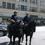 VPD, Vancouver Police Foundation, Horses, Public Relations, Press Conference