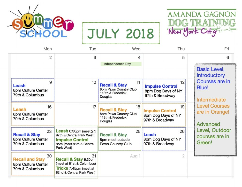July Summer School_pdf 2018 J.jpg