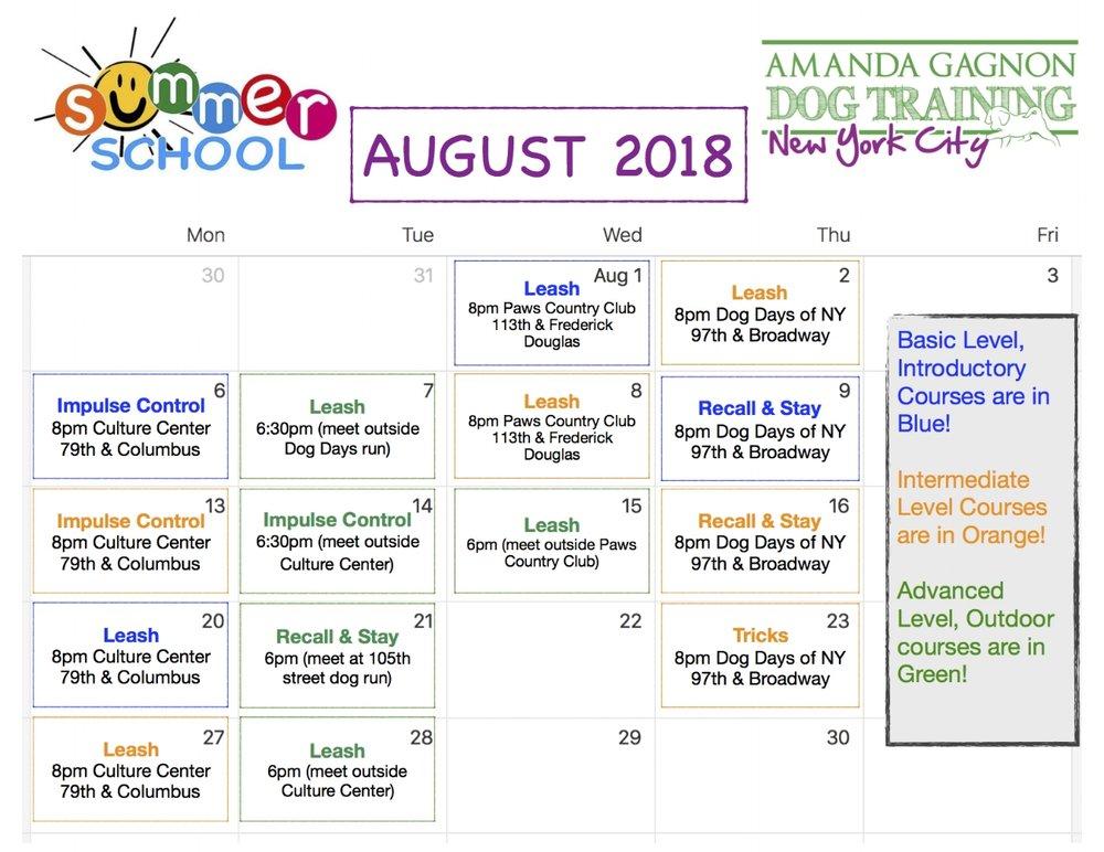 August Summer school_pdf 2018 J.jpg