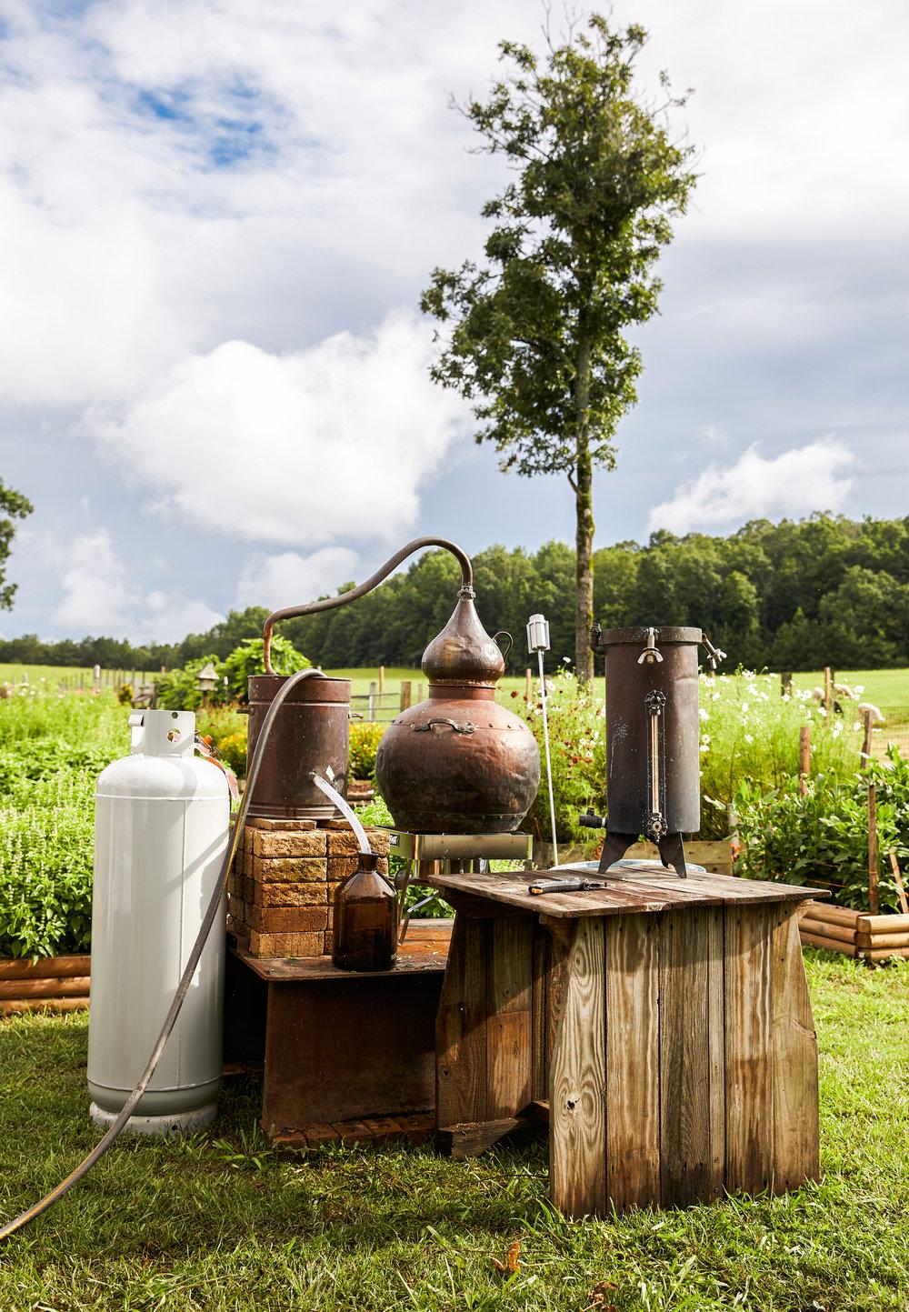distiller image.jpg
