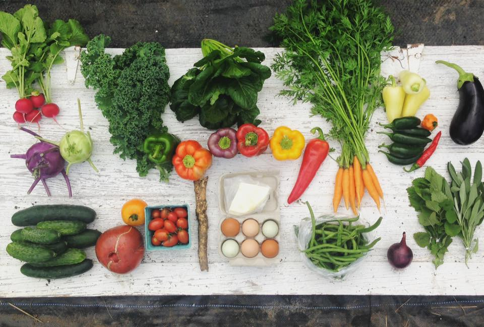 Our veggies become your medium to create in the kitchen. Make something beautiful