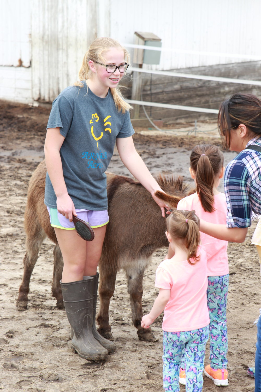 Kaity donkey.JPG