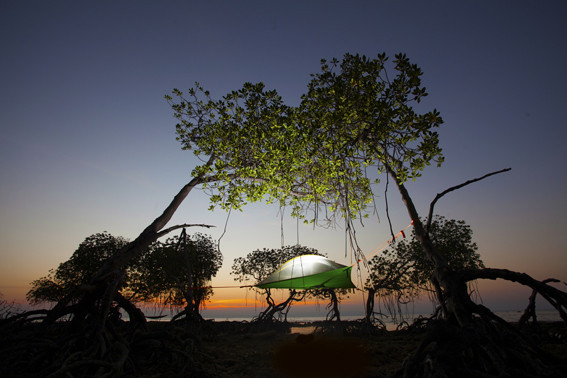 Andaman_Madagasca_small_1024x1024.jpg