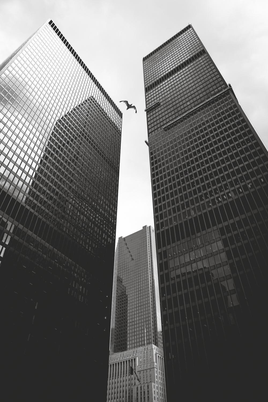 A31U2706-Skyscraper.jpg