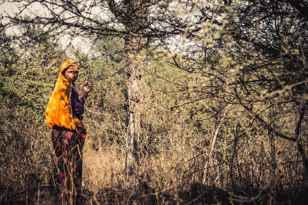 India 2013 - Lenssen-5466.jpg