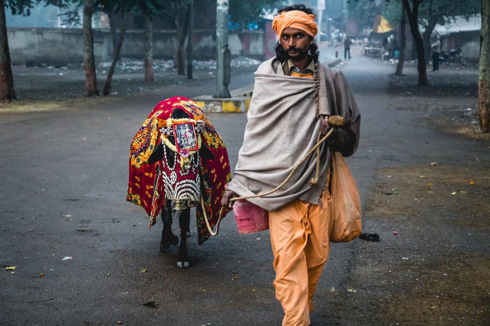 India 2013 - Lenssen-6240.jpg