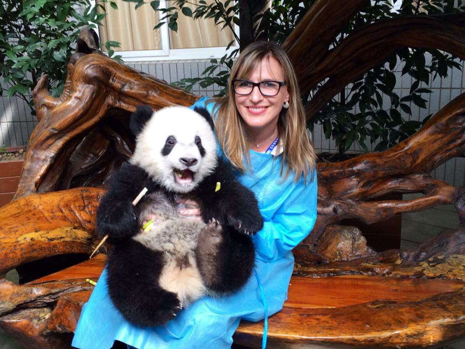 Holding a panda in china.  Where else but China can you hold a panda?!