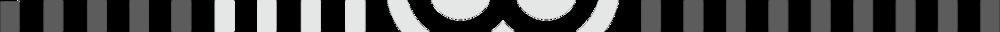 TJ WILKINS Logo Secondary Transparent DIVIDER.png