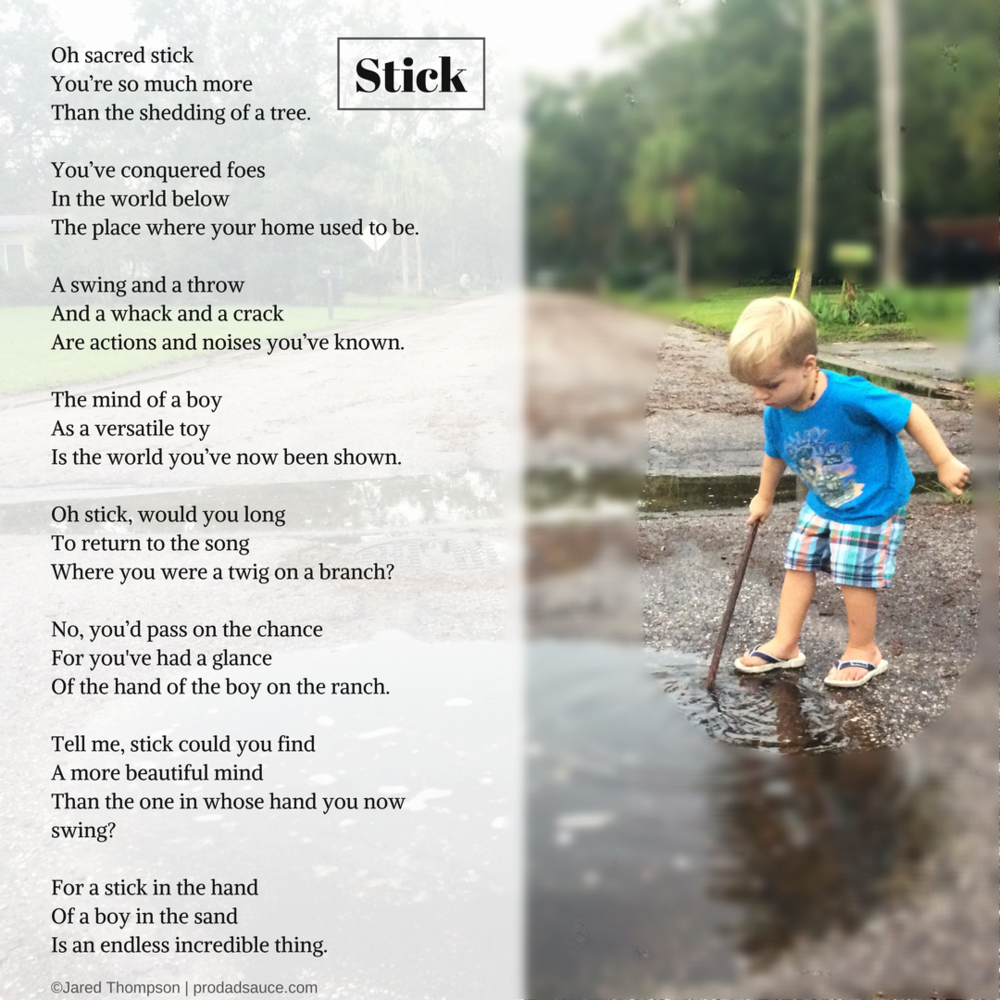 A poem on the magic of sticks in a boy's life.