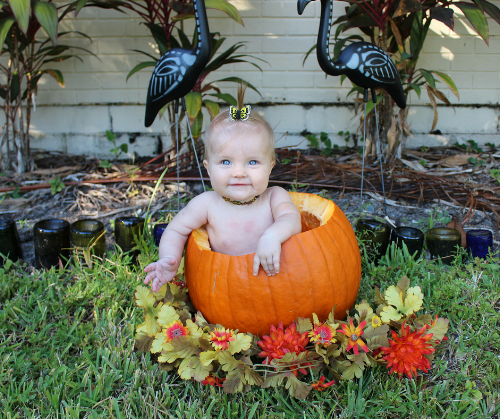 Fall tradition | Put your baby in a pumpkin!