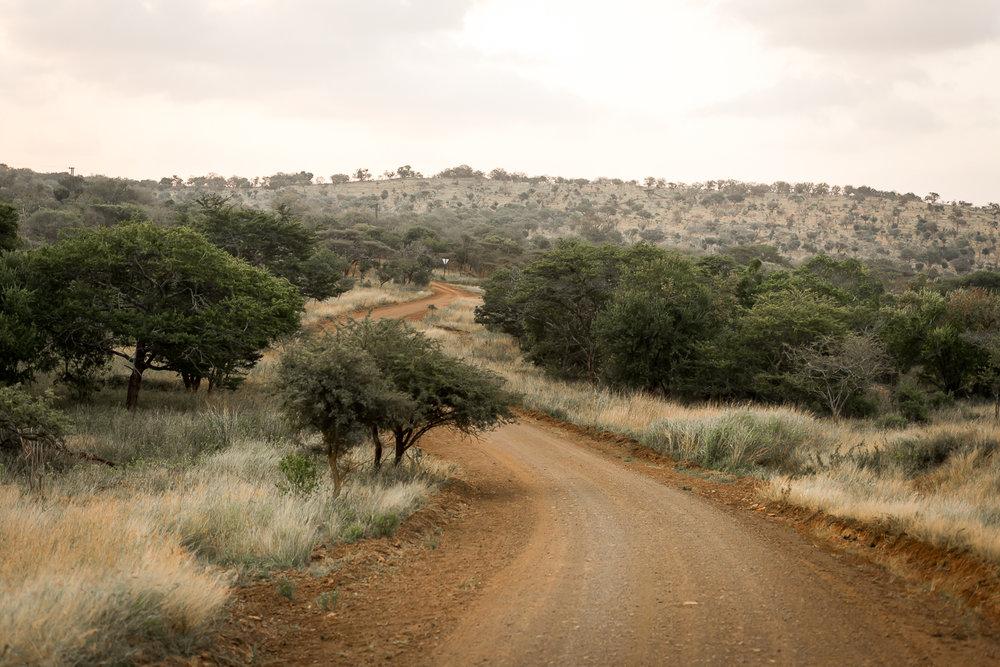 SouthAfrica-90_LR.jpg