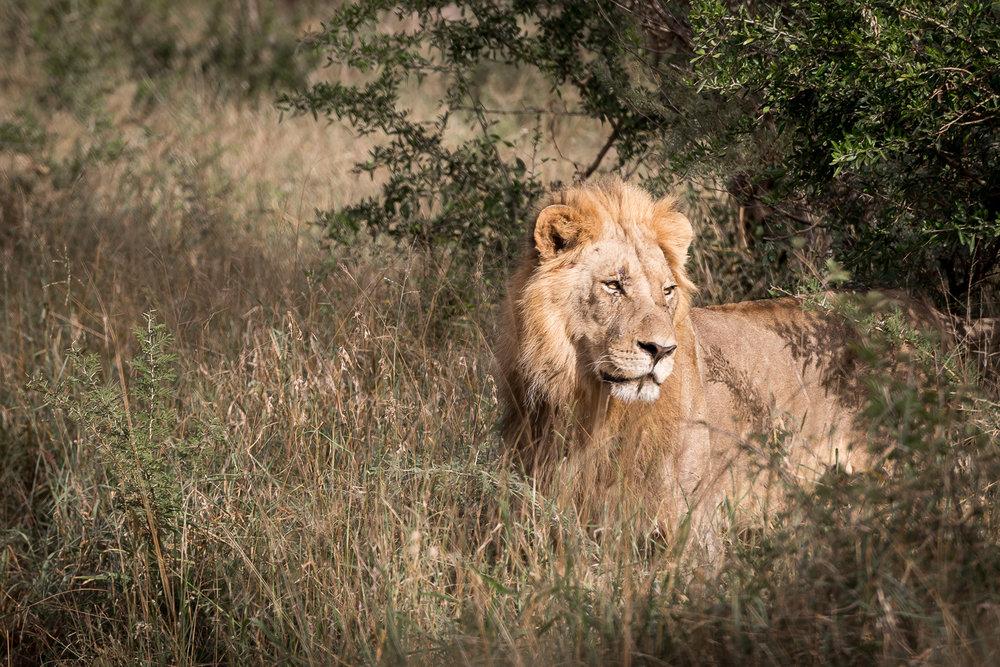 SouthAfrica-275_LR.jpg