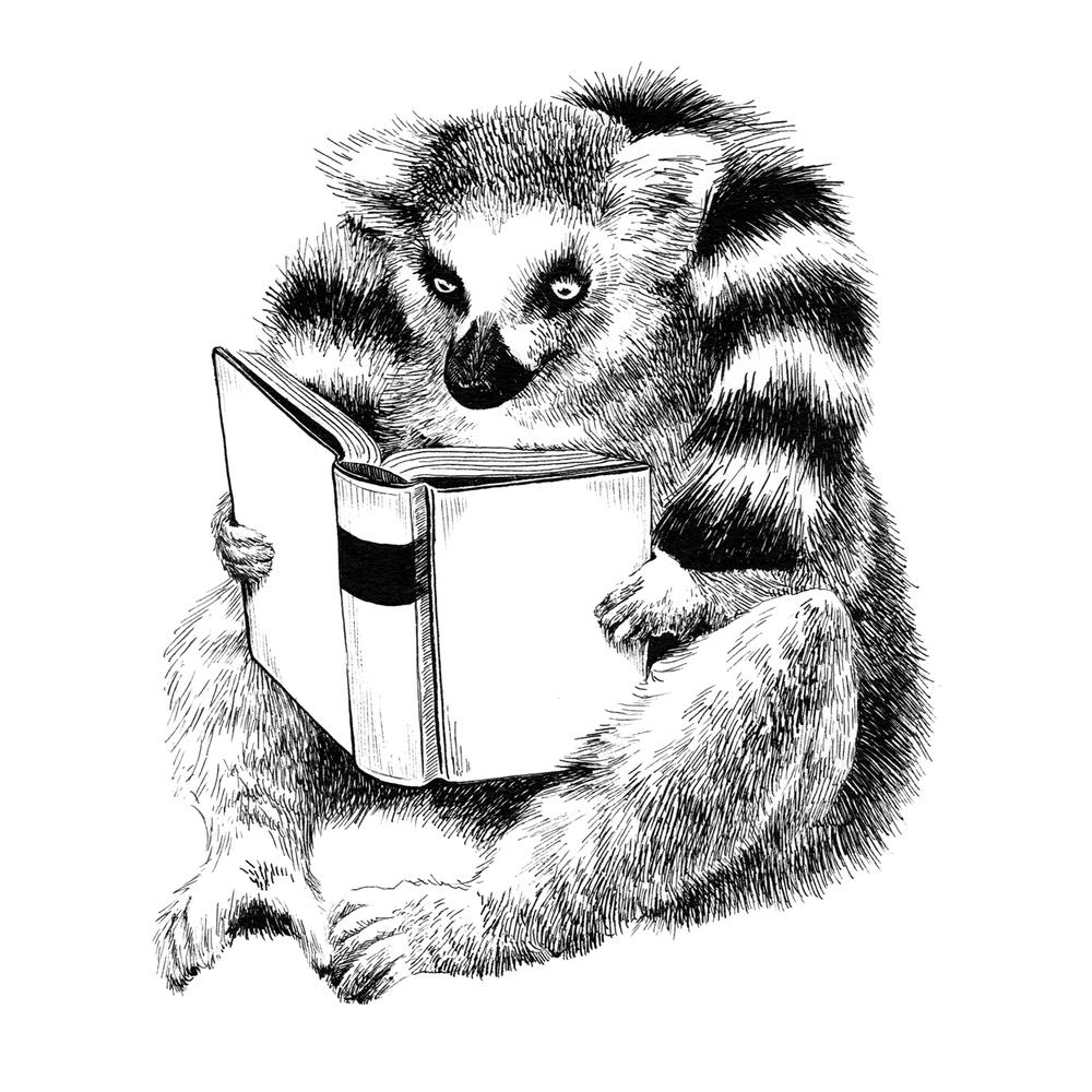 Reading Lemur