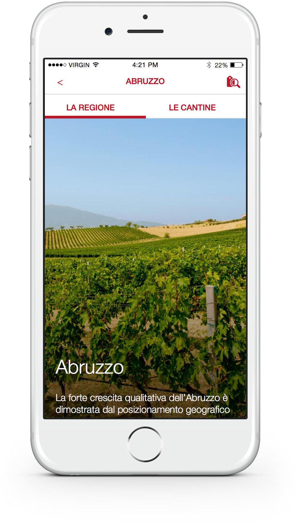 4_Wines.jpg